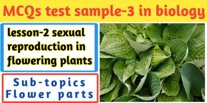 MCQs test sample-3 in biology for class 12th-CBSE-JAC Exams