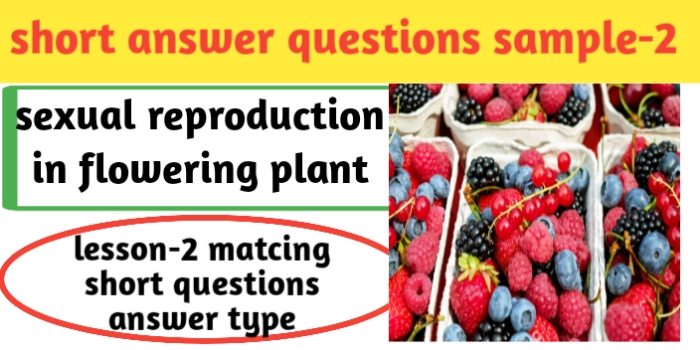 Important questions answer in biology for class 12th lesson- 2 sexual reproduction in flowering plant .