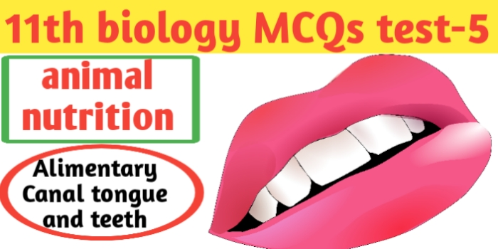 Class 11th biology MCQs test-5 for Neet-CBSE-JAC exams