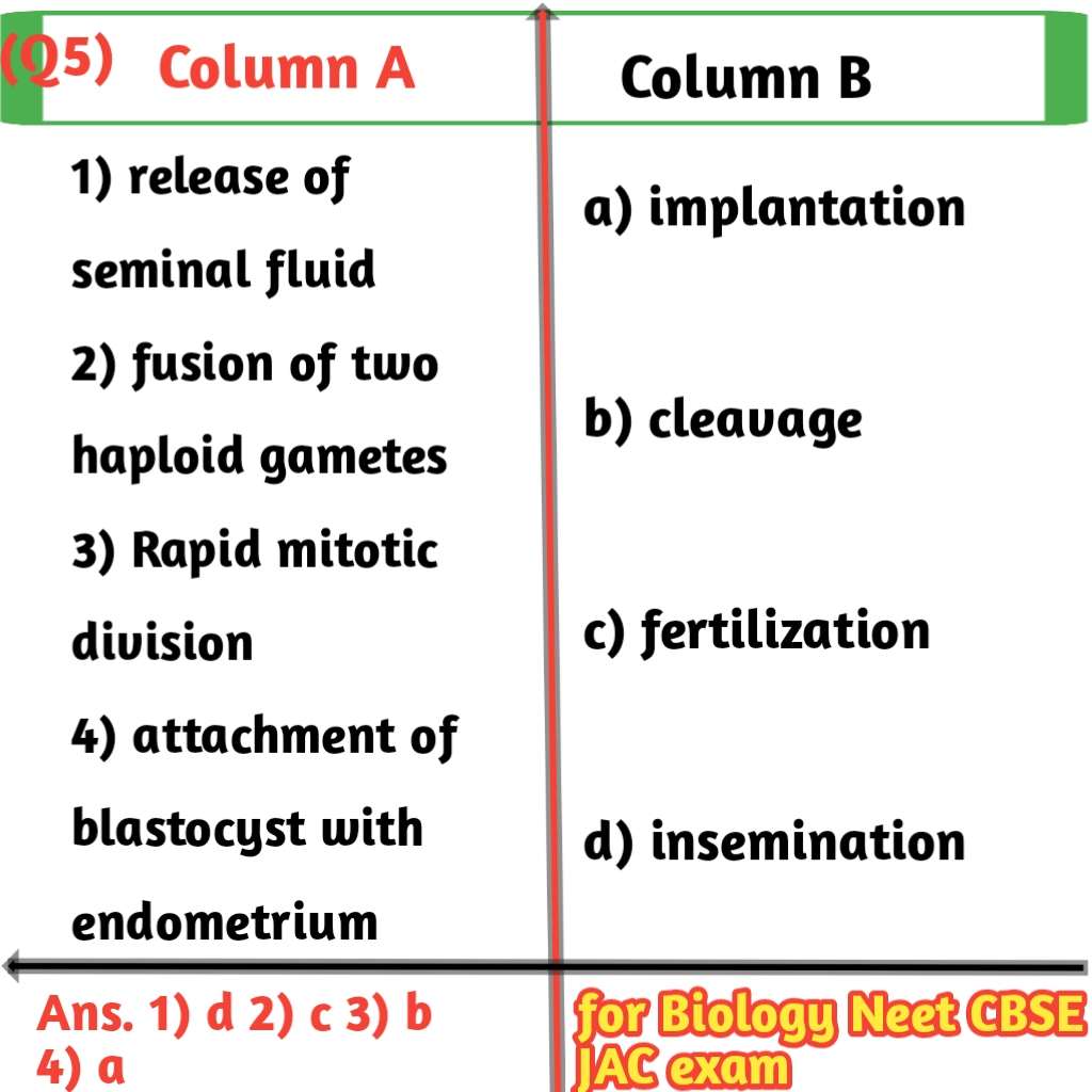 Matching question examples in biology for class 12th CBSE-JAC Exams