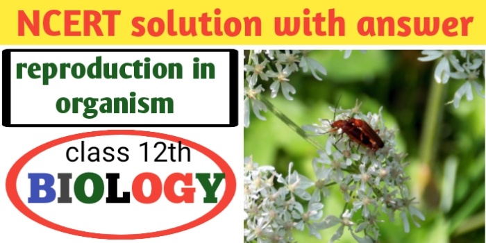 ncert solutions for class 12 biology chapter 1- CBSE-JAC exams