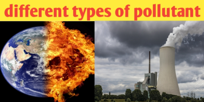 What are different types of pollutants and their definition