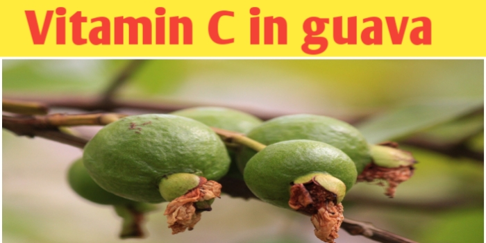 Vitamin C in guava and their health benefit