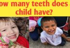 How many teeth does a child have in their mouth?