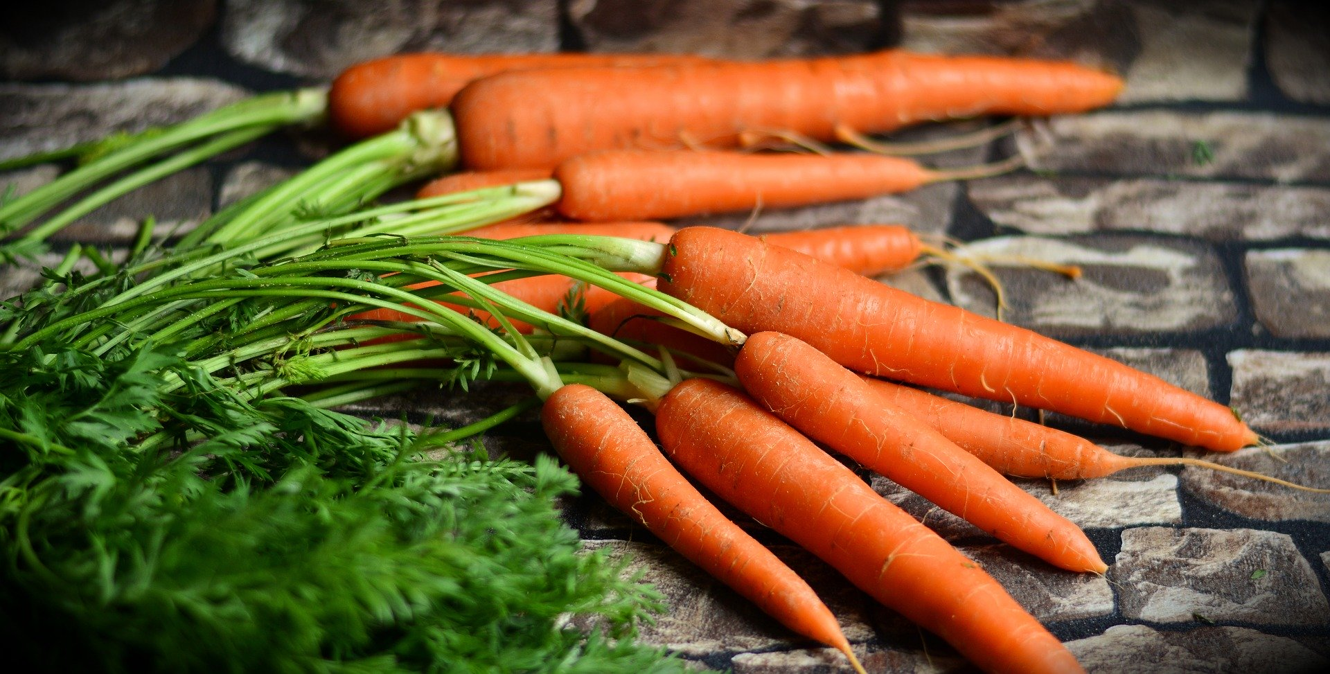 Carrot rich source of vitamin A