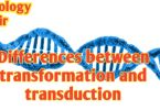 Differences between transformation and transduction