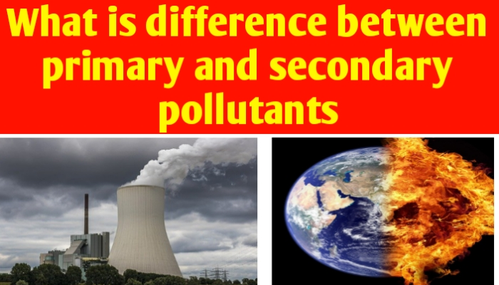 What is difference between primary and secondary pollutants